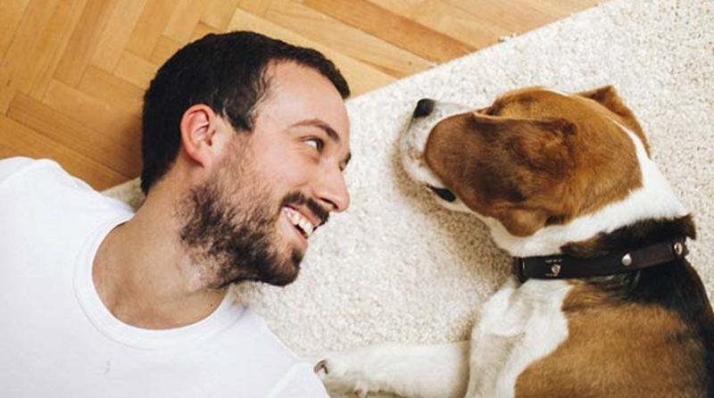 Οι ιδιοκτήτες σκύλων κινδυνεύουν λιγότερο να πεθάνουν από καρδιοαγγειακές παθήσεις