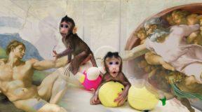 Κλωνοποίηση: Η επιστήμη έπλασε τον… μακάκο