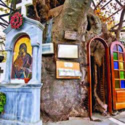 Το μοναδικό εκκλησάκι της Ελλάδας που βρίσκεται μέσα στην κουφάλα ενός πλατάνου
