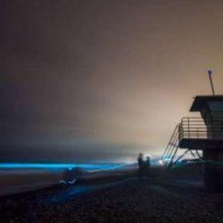 Μοναδικό φαινόμενο: Γιατί οι ακτές της νότιας Καλιφόρνια έγιναν... μπλέ