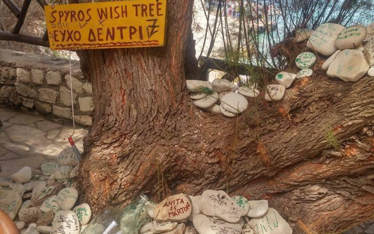 Το «μαγικό» δέντρο των ευχών στους Αντίπαξους