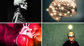 40 εκπληκτικές πληροφορίες που δεν ξέρατε για το σώμα μας