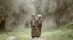 Το μάζεμα της ελιάς: Ένα εκπληκτικό φιλμ για μια ελληνική παράδοση αιώνων