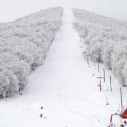 Χιονοδρομικό Κέντρο Πηλίου: Ο απόλυτος προορισμός για τους λάτρεις των χειμερινών σπορ