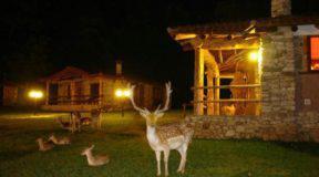 Το χωριό των Φλίνστοουνς στην Καρδίτσα