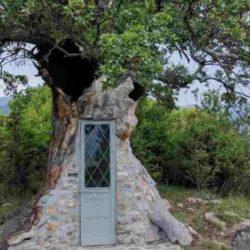 Το Εκκλησάκι Στην Κόνιτσα Που Χτίστηκε Μέσα Σε Δέντρο 300 Ετών!