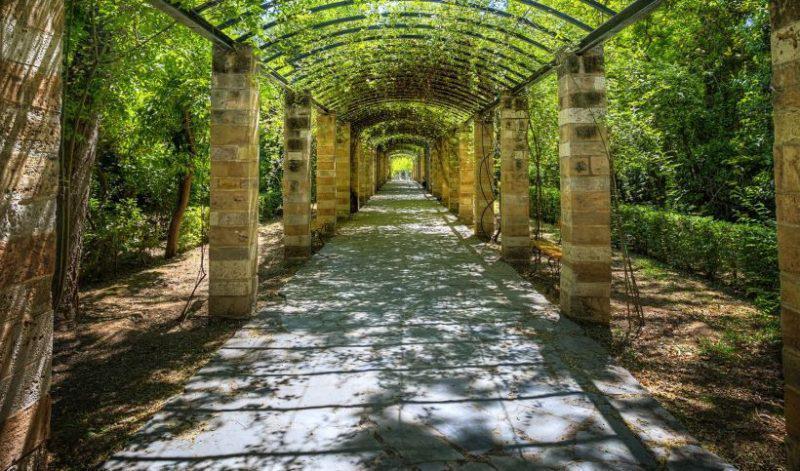 Ο Εθνικός κήπος της Αθήνας και η ιστορία του