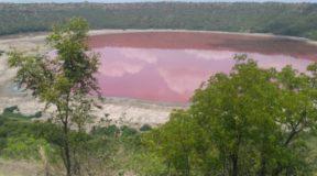 Μυστήριο με λίμνη 50.000 χρόνων στην Ινδία που έγινε ροζ μέσα σε μια ημέρα